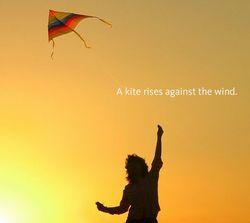 風に向かっている時