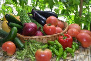 冷蔵庫の野菜達