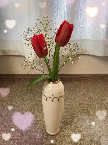 花言葉は「愛の告白」