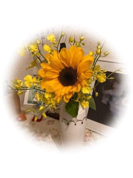 太陽に向かって咲く花